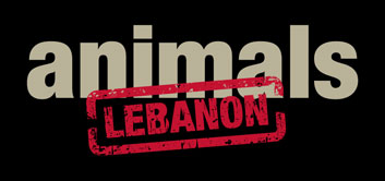 Stop Animal Abuse in Lebanon Petition